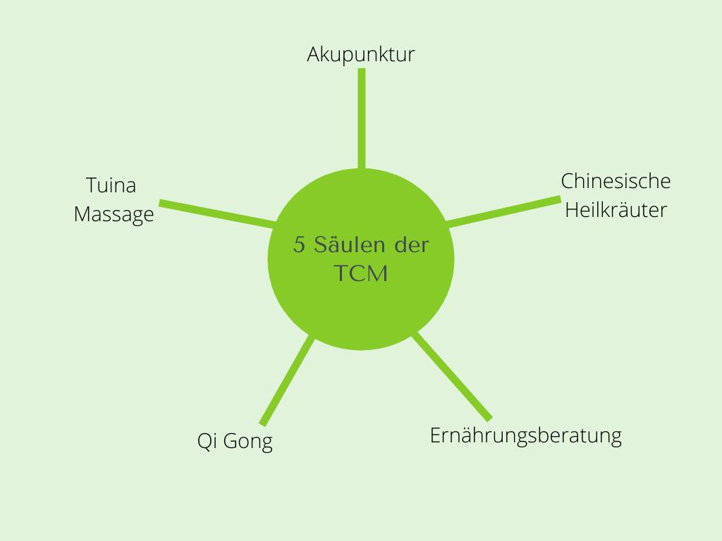 Die 5 Säulen der TCM
