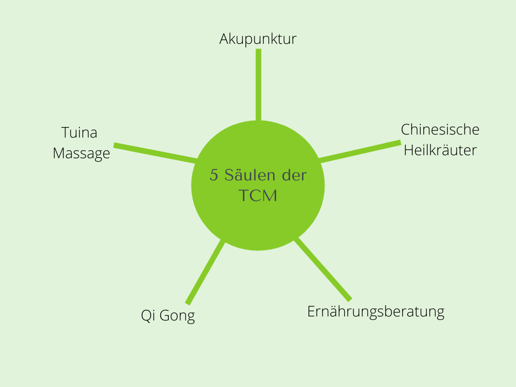 TCM München 5 Säulen